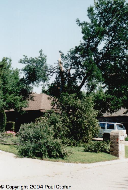 60+ Straight Line Winds damage